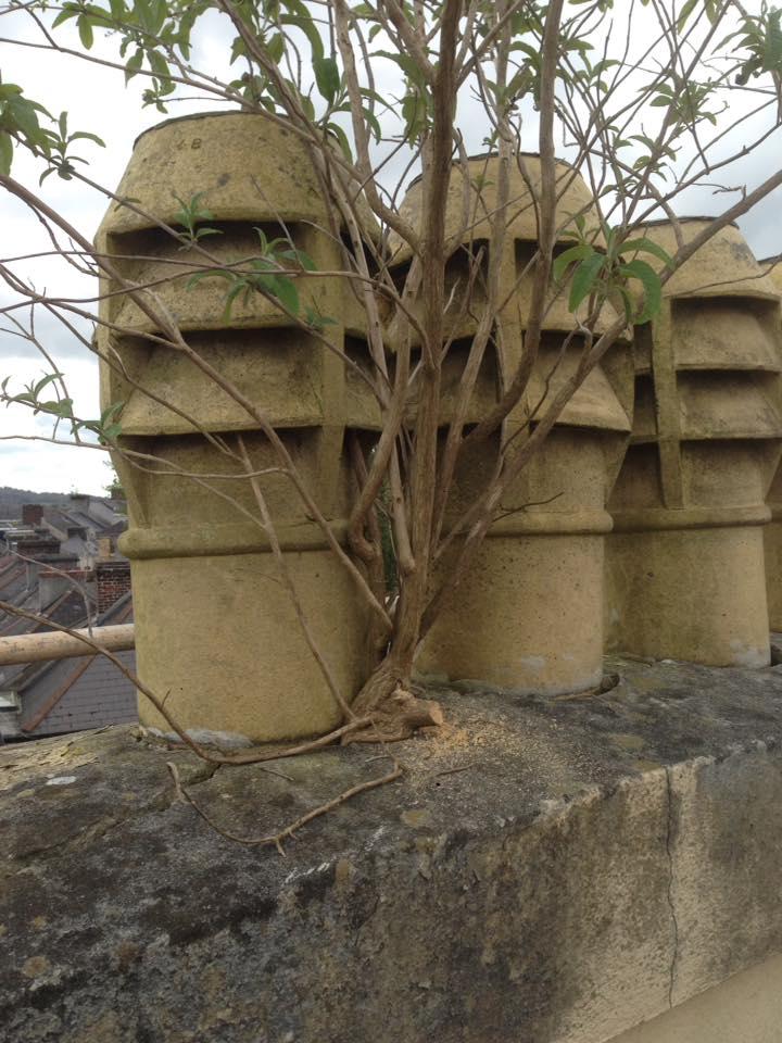 Chimney Repairs Devon