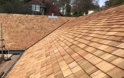 Shingle re roof project: Newton Abbot