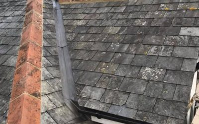 Reclaimed French Slate Roof: Newton Abbot